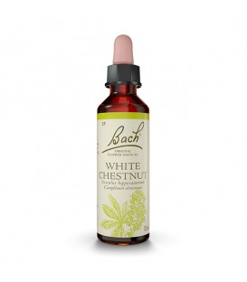 WHITE CHESTNUT - Marronnier blanc / 20ml / Fleurs de Bach