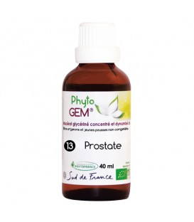 13-GEMMO PROSTATE - 40ml